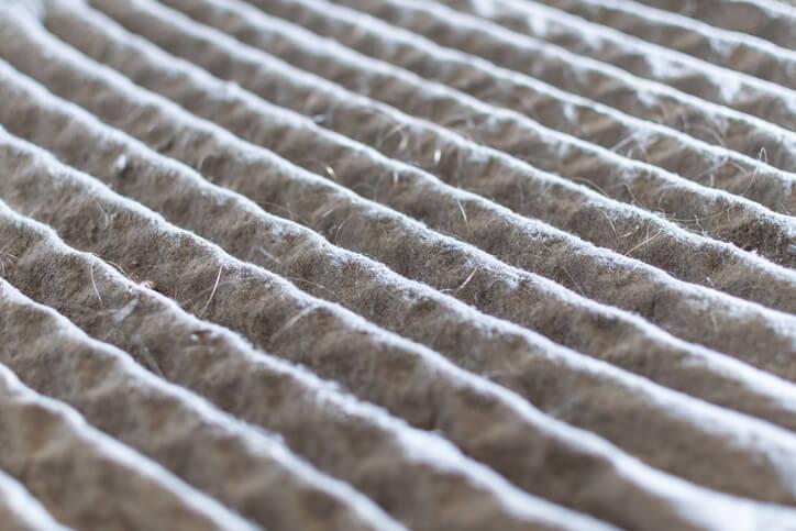Moldy AC Filter